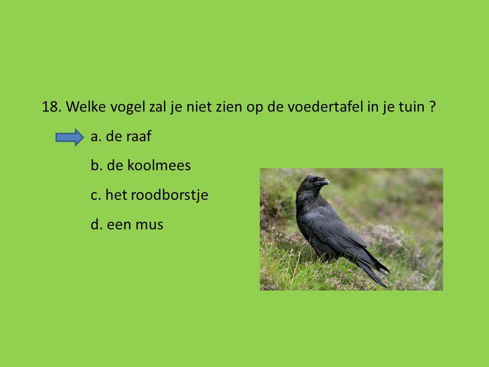 18. Welke vogel zal je niet zien op de voedertafel in je tuin