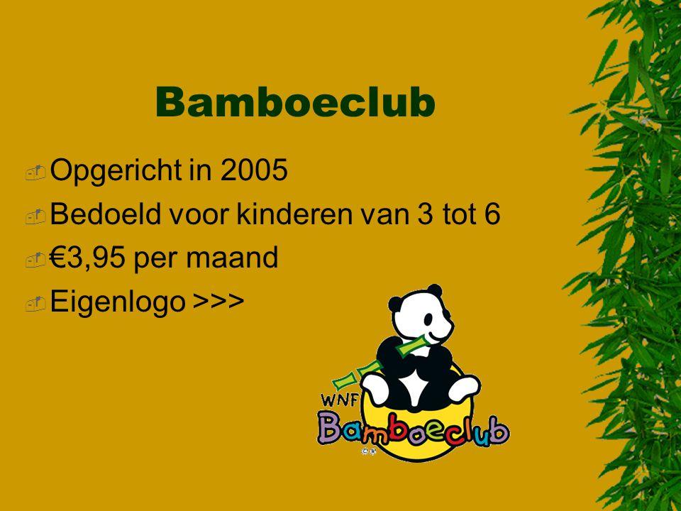 Bamboeclub Opgericht in 2005 Bedoeld voor kinderen van 3 tot 6