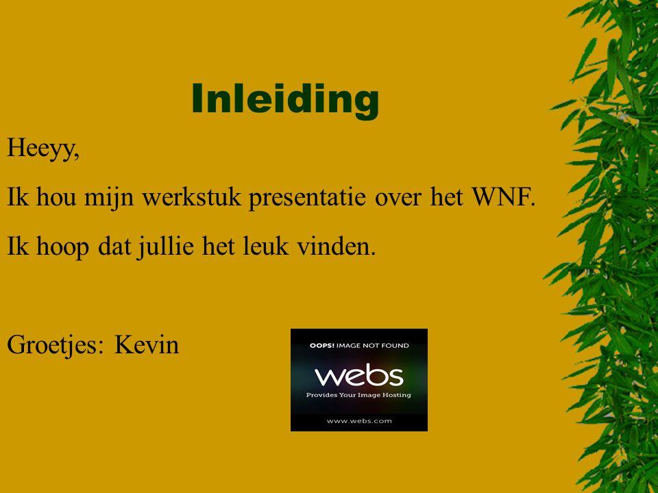 Inleiding Heeyy, Ik hou mijn werkstuk presentatie over het WNF.
