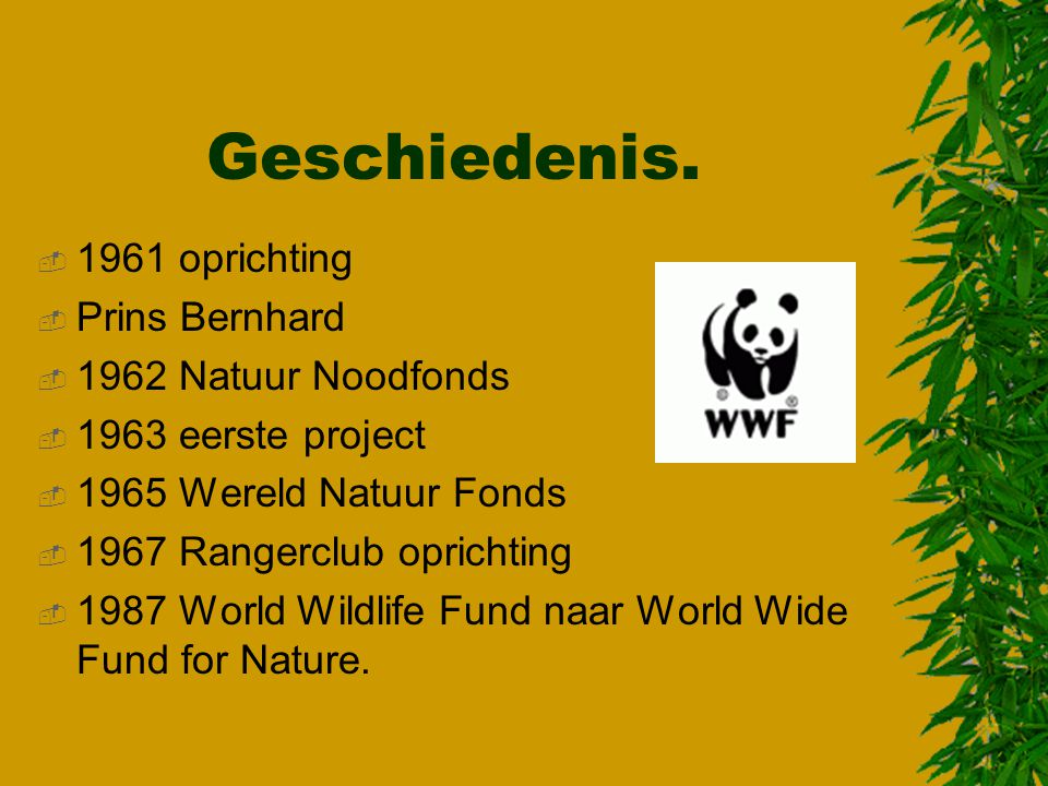 Wereld Natuur Fonds door  Kevin Eek    ppt download