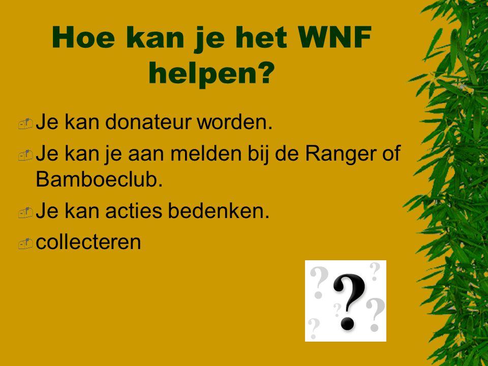 Hoe kan je het WNF helpen