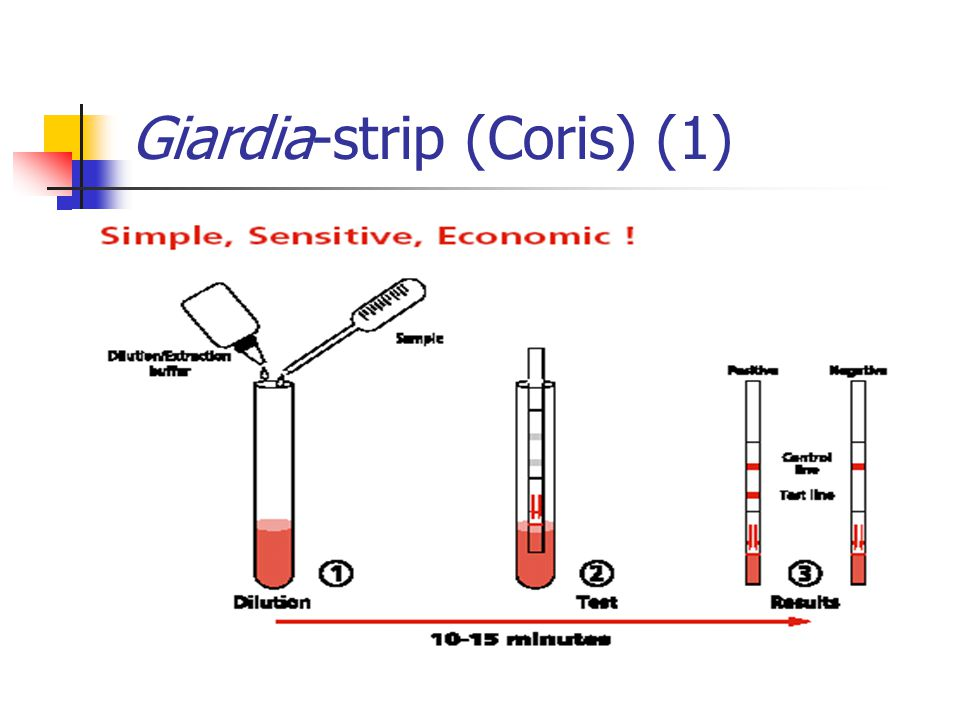 Giardia-strip (Coris) (1)