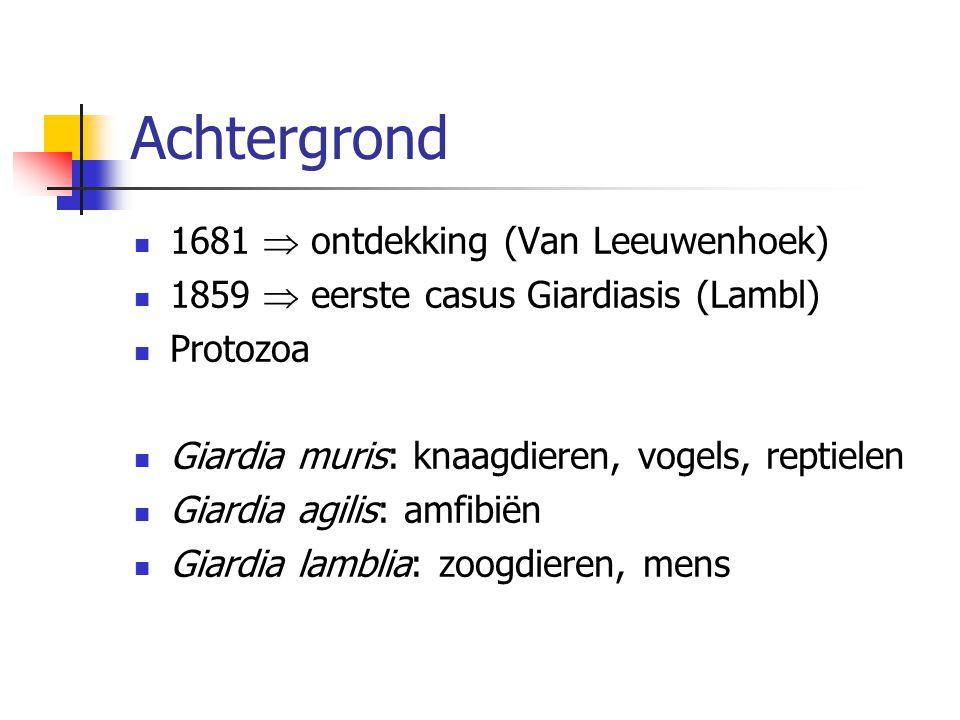 Achtergrond 1681  ontdekking (Van Leeuwenhoek)
