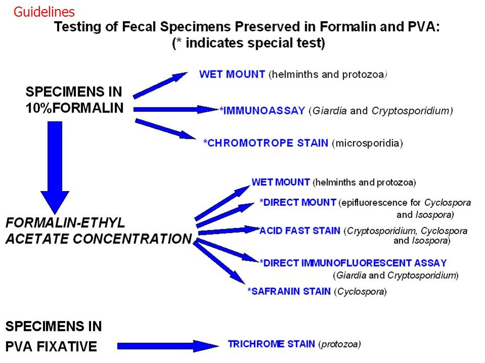 Guidelines aanvaardbare testen ter versterking van het standaard microscopisch onderzoek.