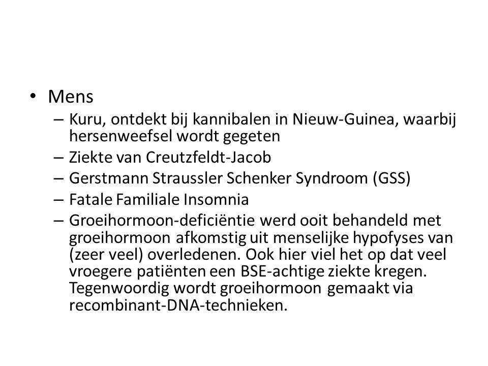 Mens Kuru, ontdekt bij kannibalen in Nieuw-Guinea, waarbij hersenweefsel wordt gegeten. Ziekte van Creutzfeldt-Jacob.