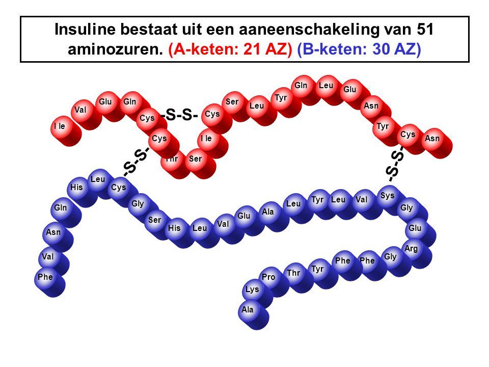 Insuline bestaat uit een aaneenschakeling van 51 aminozuren