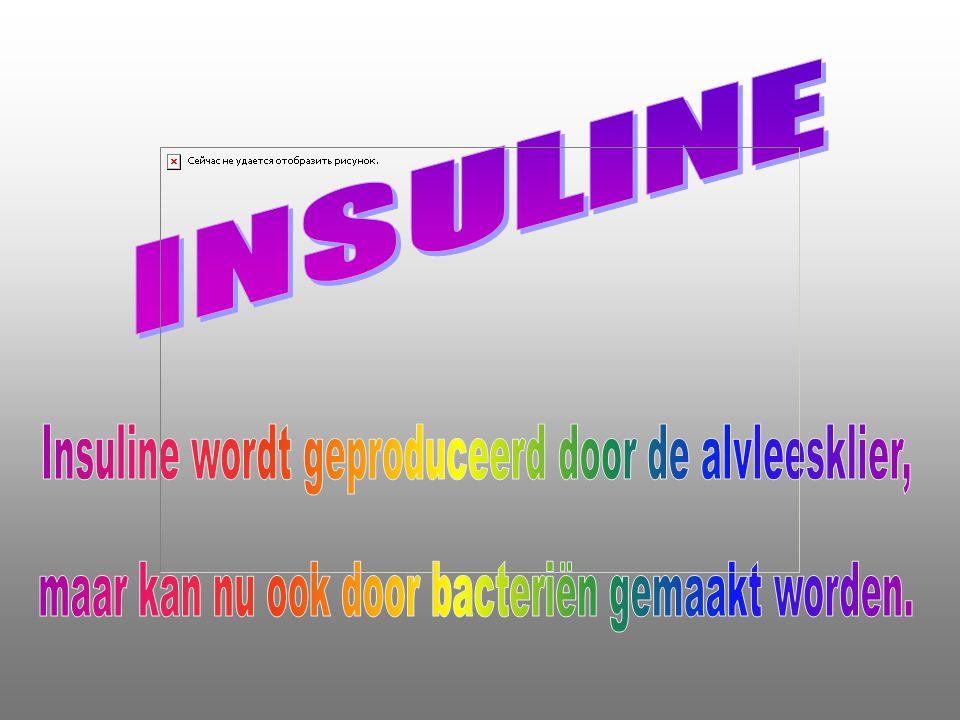Insuline wordt geproduceerd door de alvleesklier,