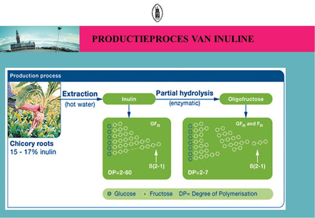 PRODUCTIEPROCES VAN INULINE