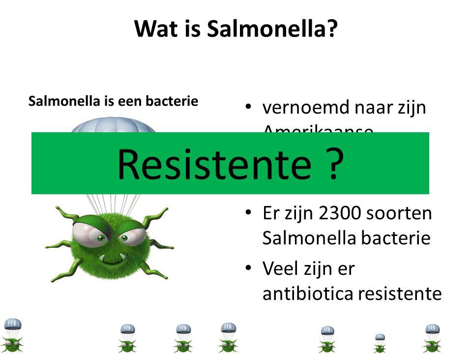 Resistente Wat is Salmonella