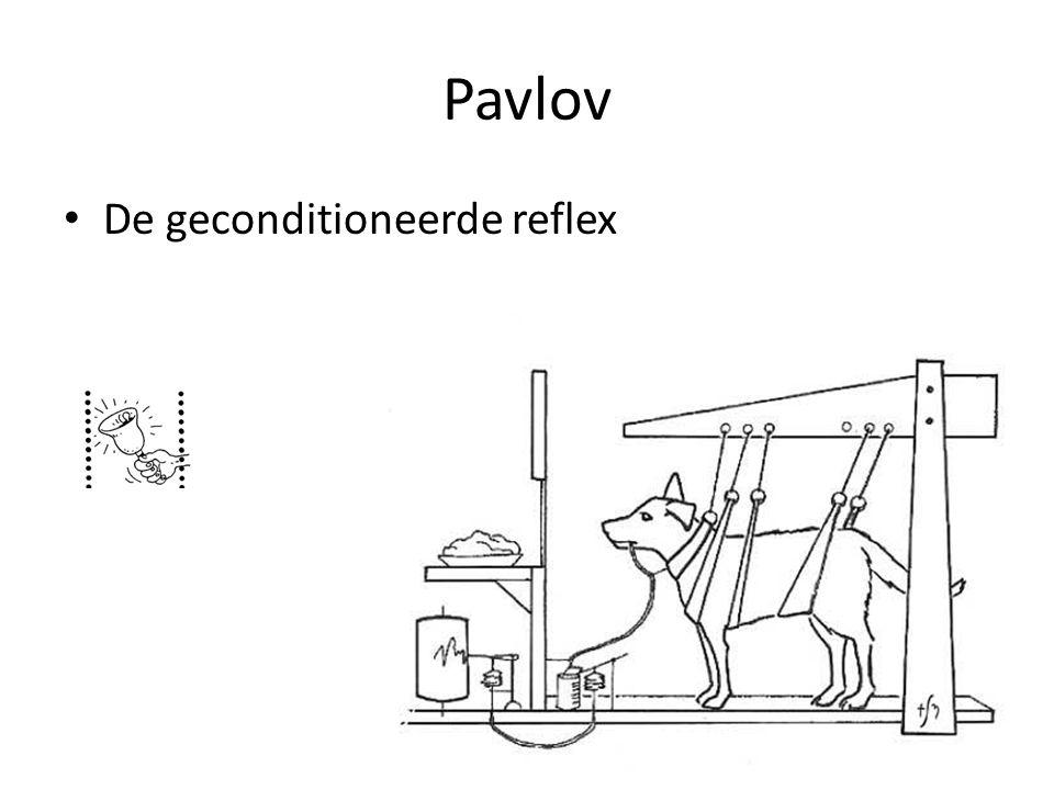 Pavlov De geconditioneerde reflex