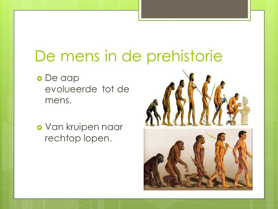 De mens in de prehistorie