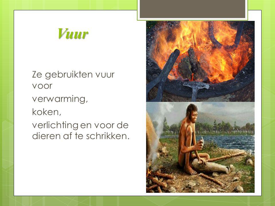 Vuur Ze gebruikten vuur voor verwarming, koken, verlichting en voor de dieren af te schrikken.