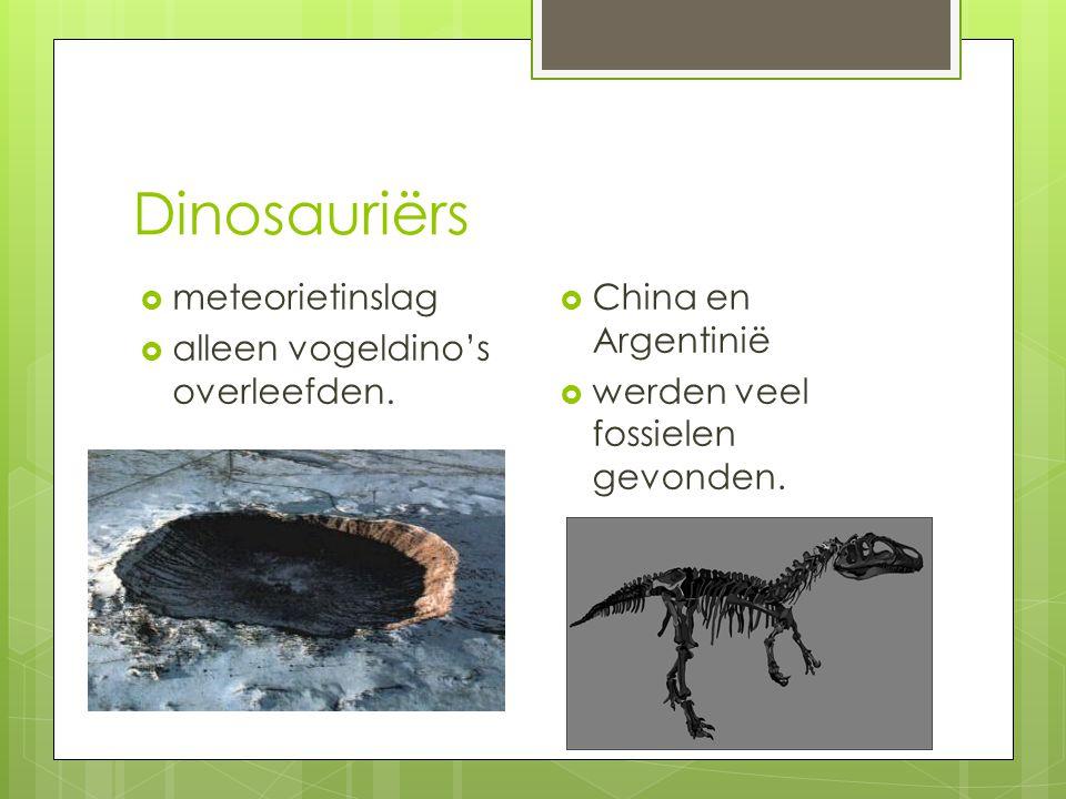 Dinosauriërs meteorietinslag alleen vogeldino's overleefden.