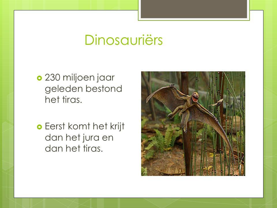 Dinosauriërs 230 miljoen jaar geleden bestond het tiras.