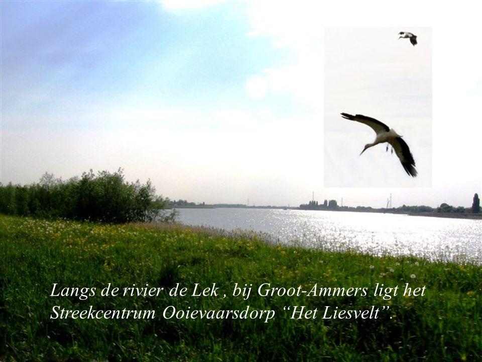 Langs de rivier de Lek , bij Groot-Ammers ligt het Streekcentrum Ooievaarsdorp Het Liesvelt .