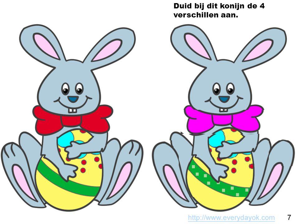 Duid bij dit konijn de 4 verschillen aan.