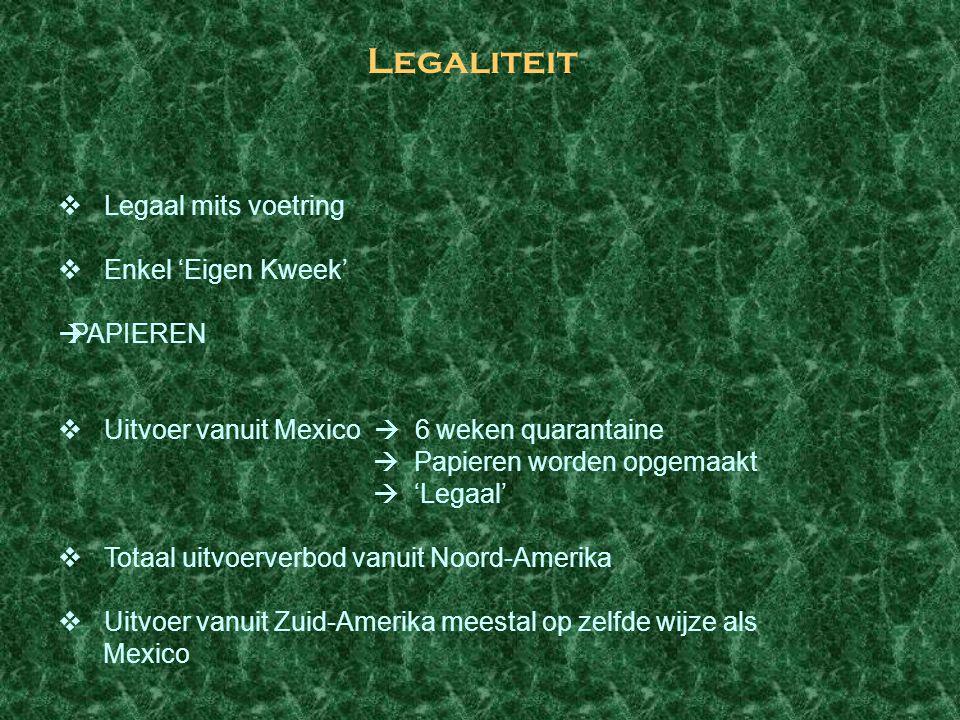 Legaliteit Legaal mits voetring Enkel 'Eigen Kweek' PAPIEREN