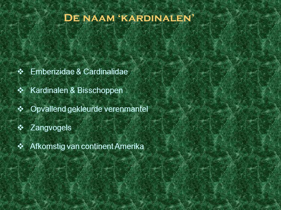 De naam 'kardinalen' Emberizidae & Cardinalidae