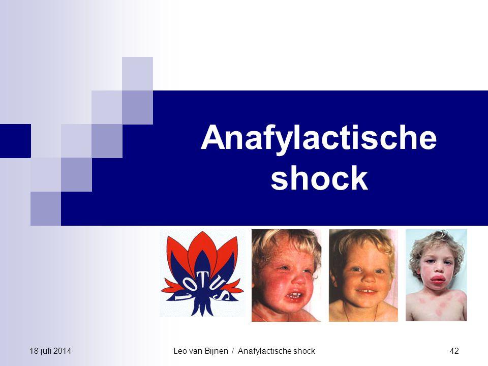 Leo van Bijnen / Anafylactische shock