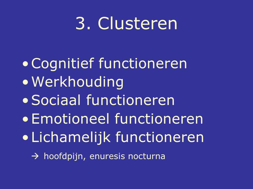 3. Clusteren Cognitief functioneren Werkhouding Sociaal functioneren