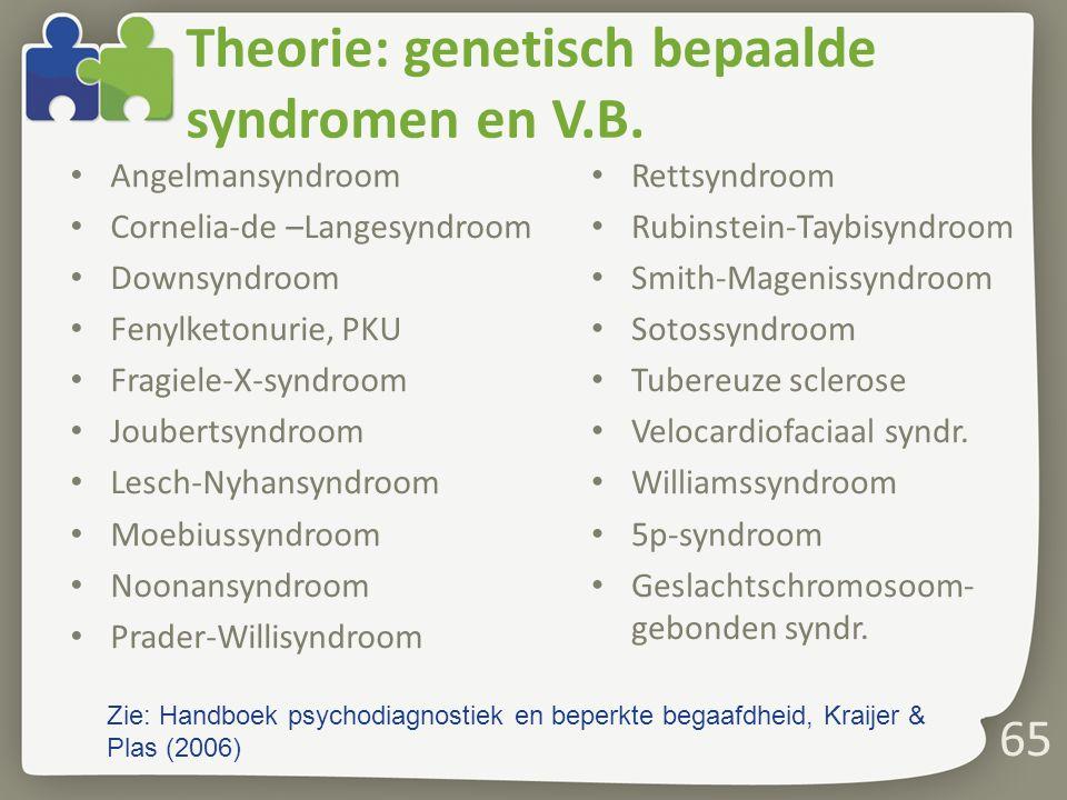 Theorie: genetisch bepaalde syndromen en V.B.