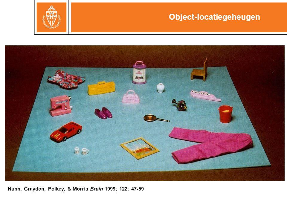 Object-locatiegeheugen