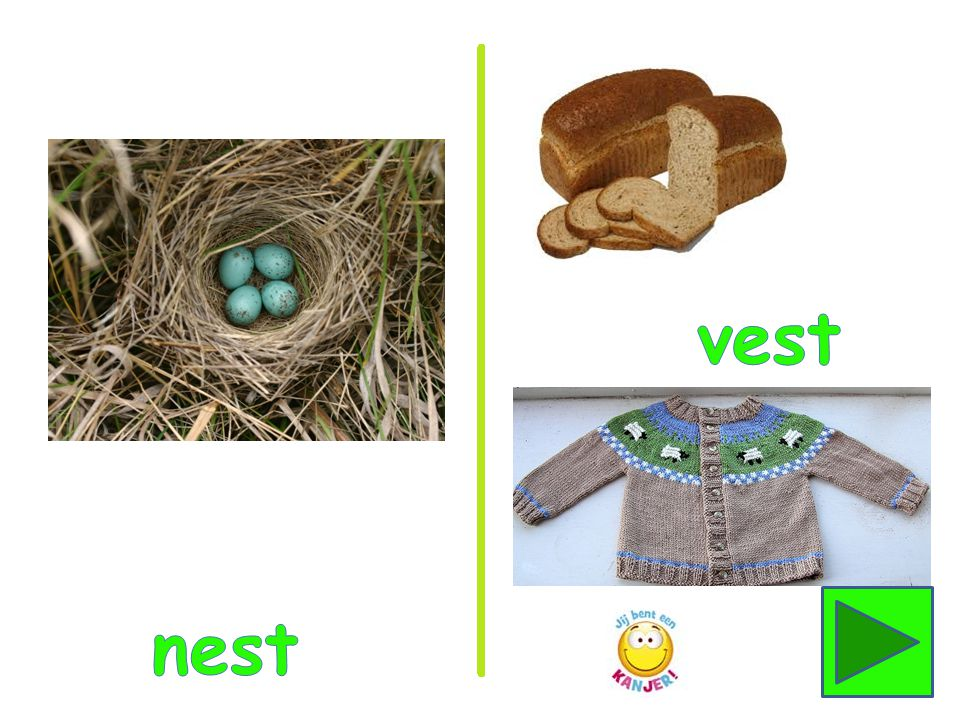 vest nest