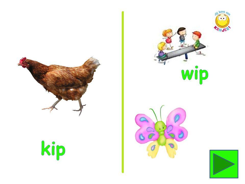 wip kip