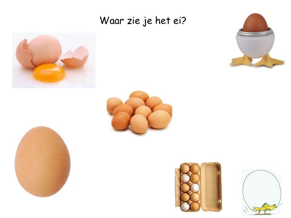 Waar zie je het ei