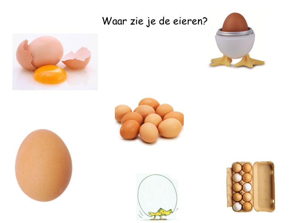 Waar zie je de eieren