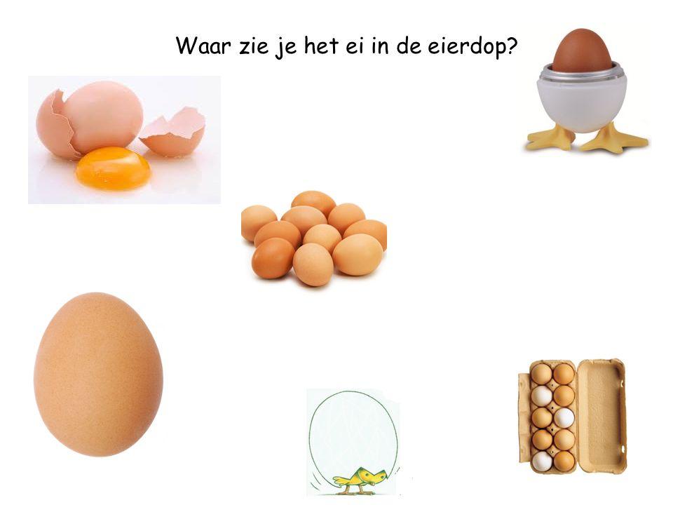 Waar zie je het ei in de eierdop
