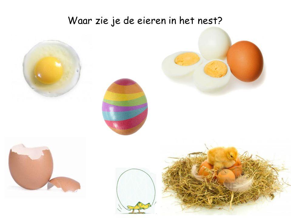 Waar zie je de eieren in het nest