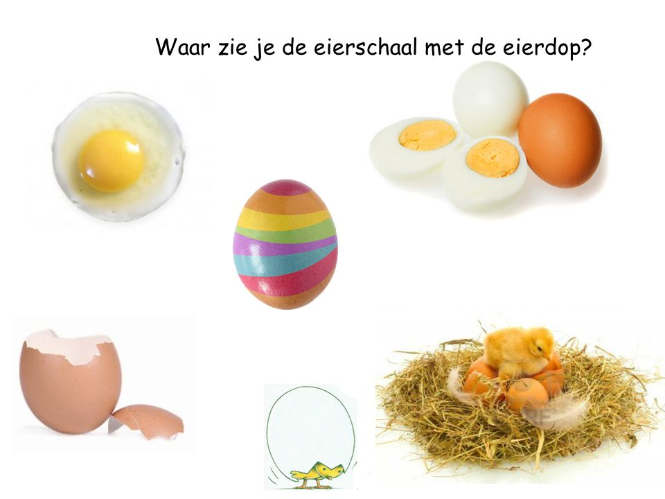 Waar zie je de eierschaal met de eierdop