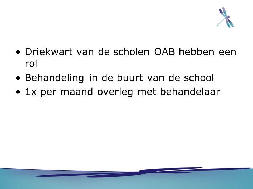Driekwart van de scholen OAB hebben een rol