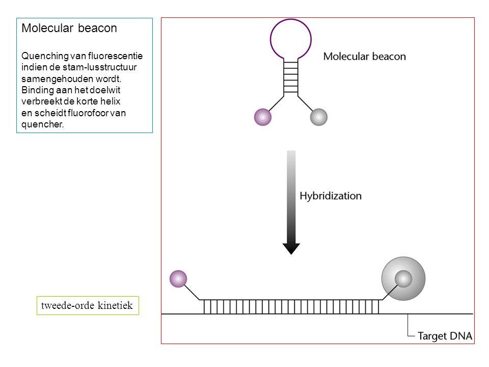 Molecular beacon tweede-orde kinetiek Quenching van fluorescentie