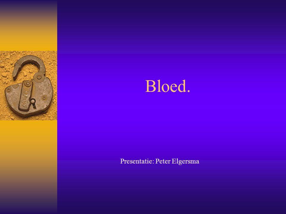 Presentatie: Peter Elgersma