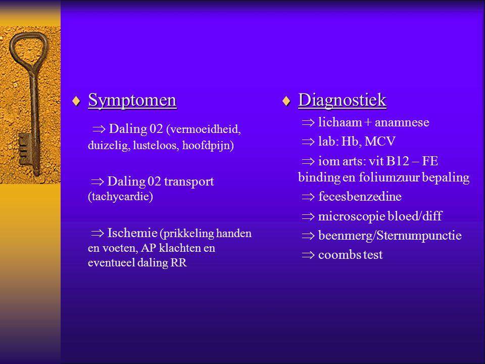  Daling 02 (vermoeidheid, duizelig, lusteloos, hoofdpijn) Diagnostiek