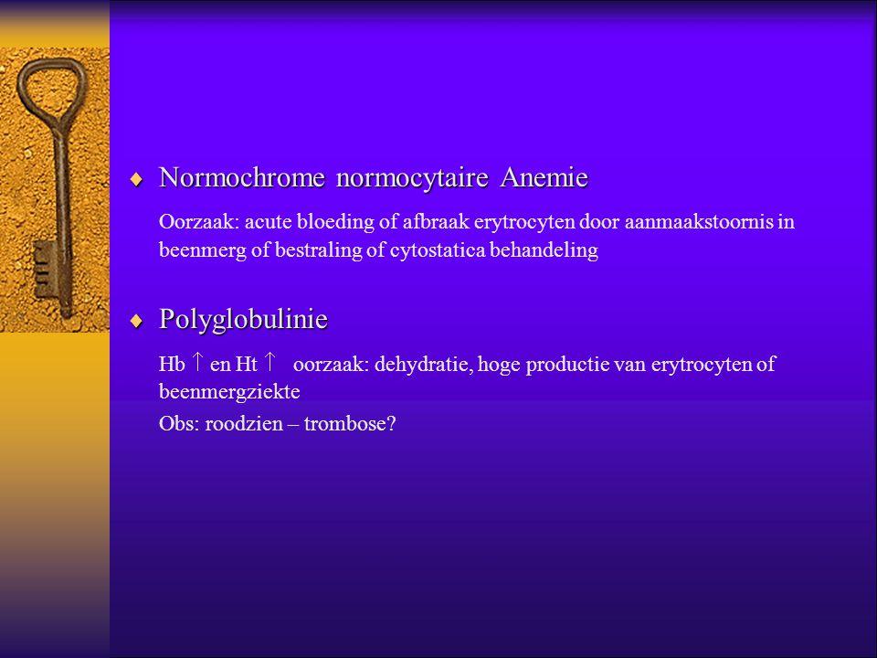 Normochrome normocytaire Anemie