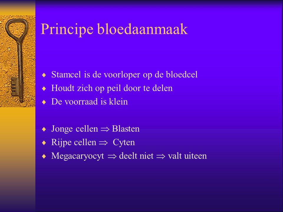 Principe bloedaanmaak
