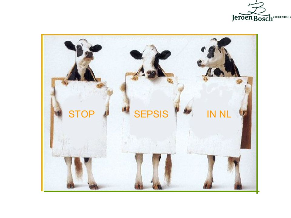 STOP SEPSIS IN NL