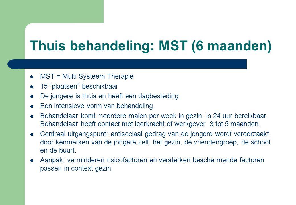 Thuis behandeling: MST (6 maanden)