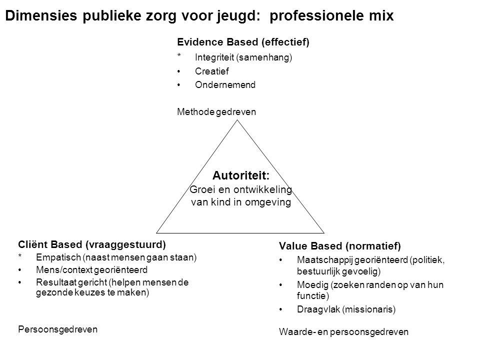 Dimensies publieke zorg voor jeugd: professionele mix