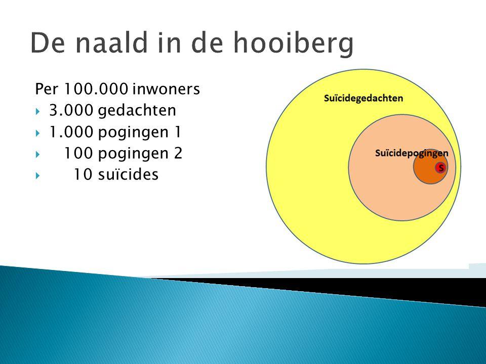 De naald in de hooiberg Per 100.000 inwoners 3.000 gedachten