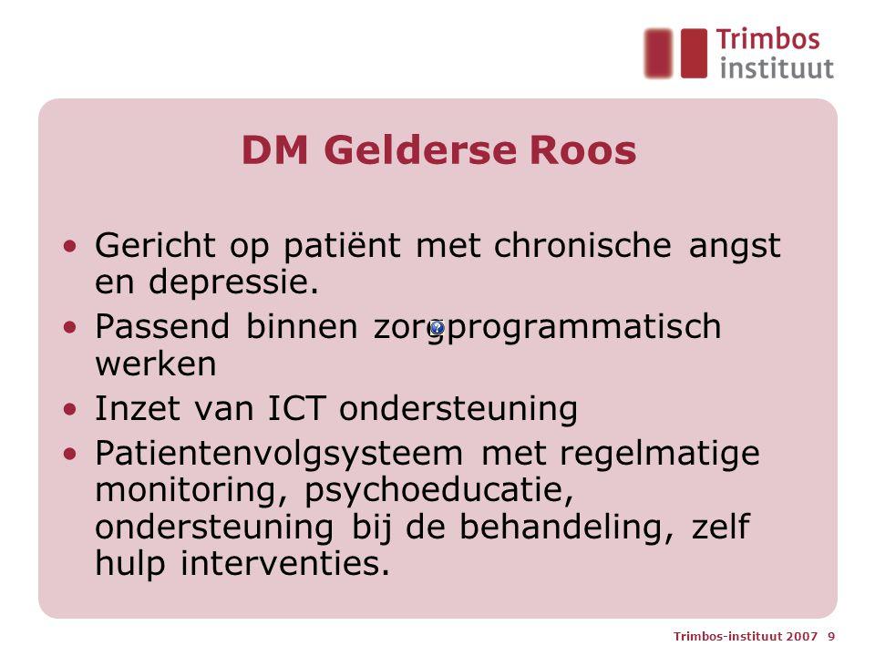 DM Gelderse Roos Gericht op patiënt met chronische angst en depressie.