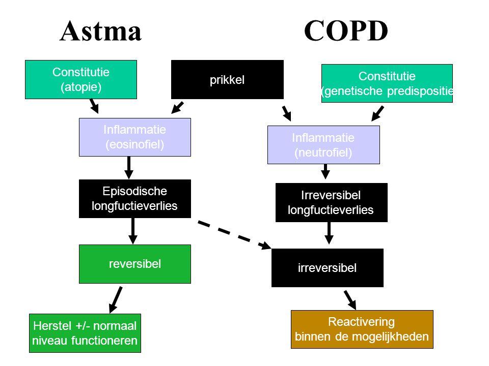 Astma COPD Constitutie (atopie) prikkel Constitutie