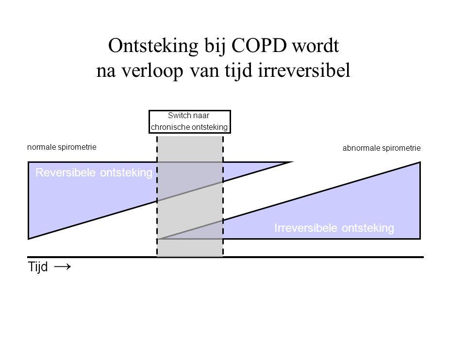 Ontsteking bij COPD wordt na verloop van tijd irreversibel