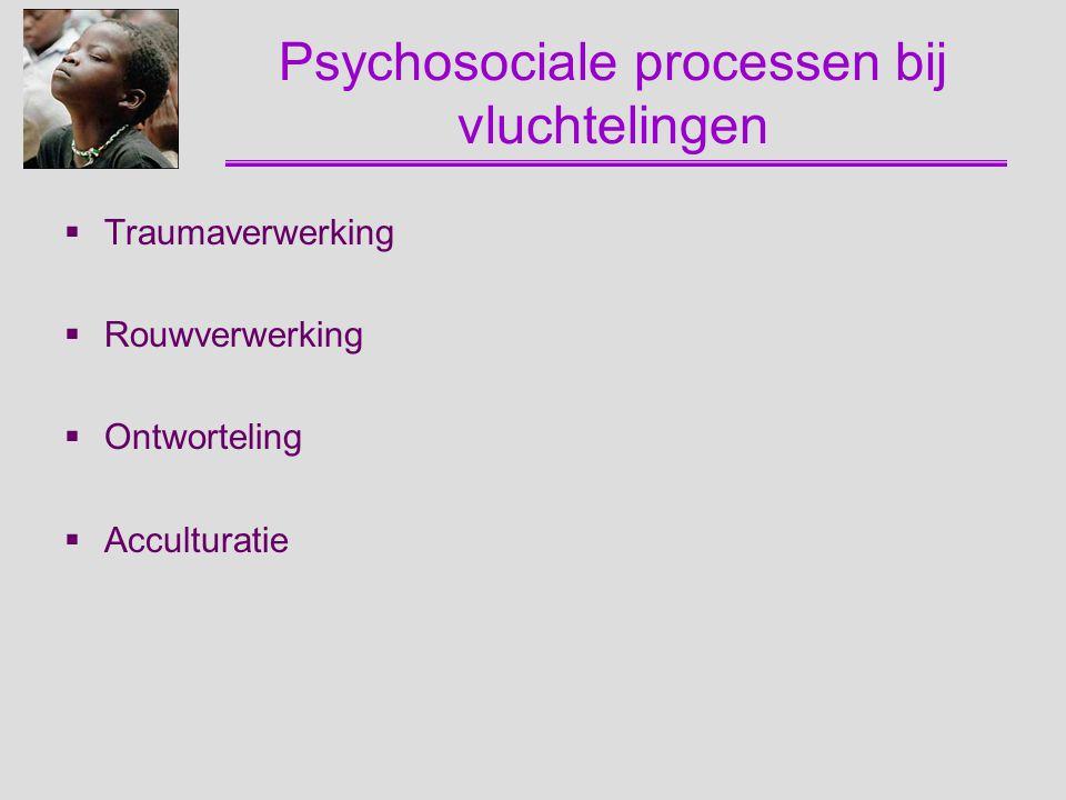 Psychosociale processen bij vluchtelingen