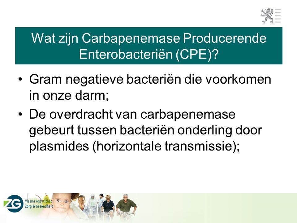 Wat zijn Carbapenemase Producerende Enterobacteriën (CPE)