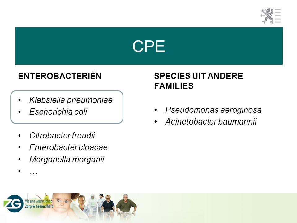 CPE ENTEROBACTERIËN Klebsiella pneumoniae Escherichia coli
