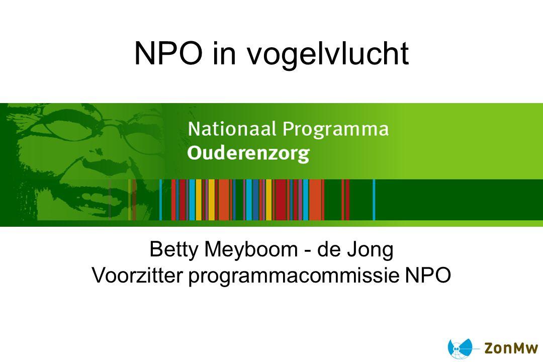 Voorzitter programmacommissie NPO